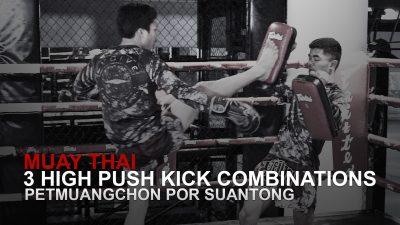 3 High Push Kick Combinations