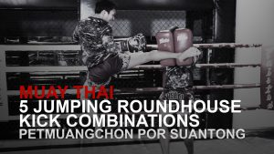 5 Jumping Roundhouse Kick Combinations