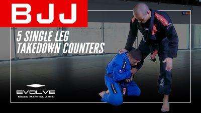 5 Single Leg Takedown Counters