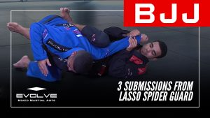 3 Submissions From Lasso Spider Guard