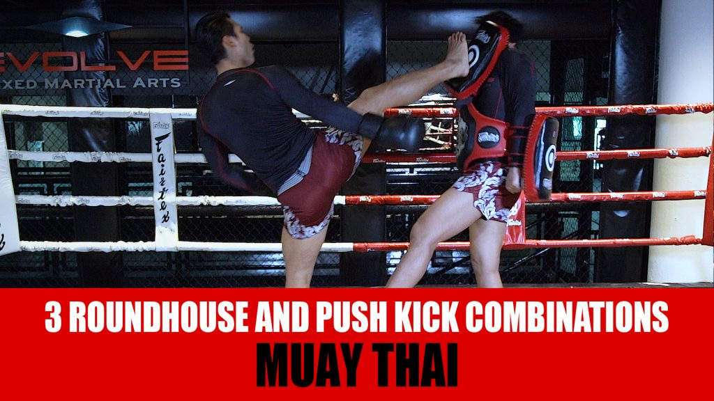 3 Roundhouse And Push Kick Combinations