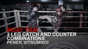 3 Leg Catch And Counter Combinations