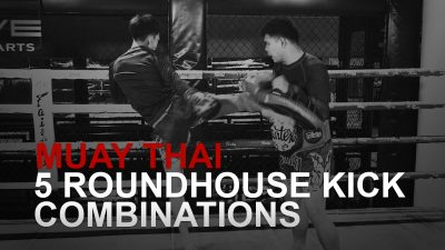 5 Roundhouse Kick Combinations