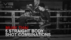 5 Straight Body Shot Combinations