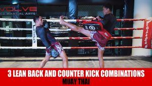 3 Lean Back And Counter Kick Combinations