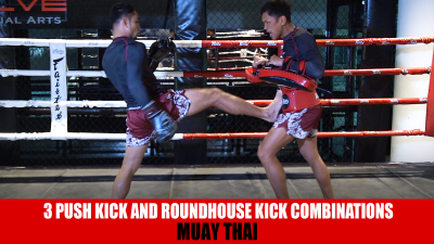 3 Push Kick And Roundhouse Kick Combinations