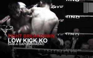 FIGHT BREAKDOWN: Powerful Leg Kick KO