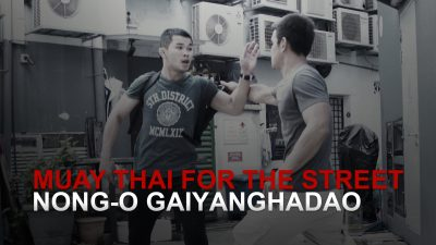 Muay Thai For The Street: The Long Guard
