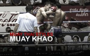 Muay Thai Fighting Styles Part 1 - Muay Khao (Knee Fighter)