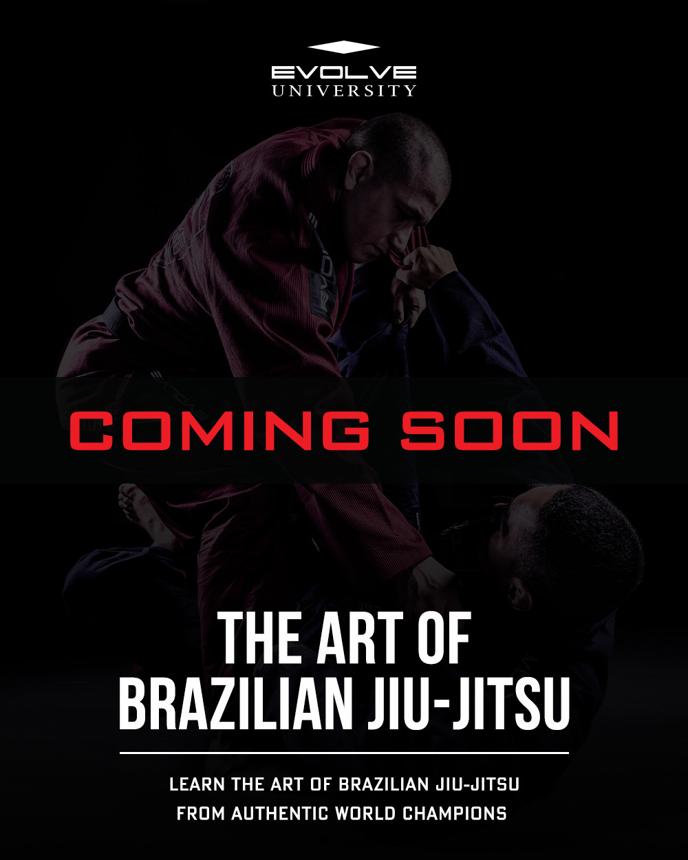 The Art Of Brazilian Jiu-Jitsu