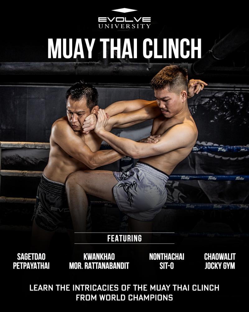 Muay Thai Clinch Master Course