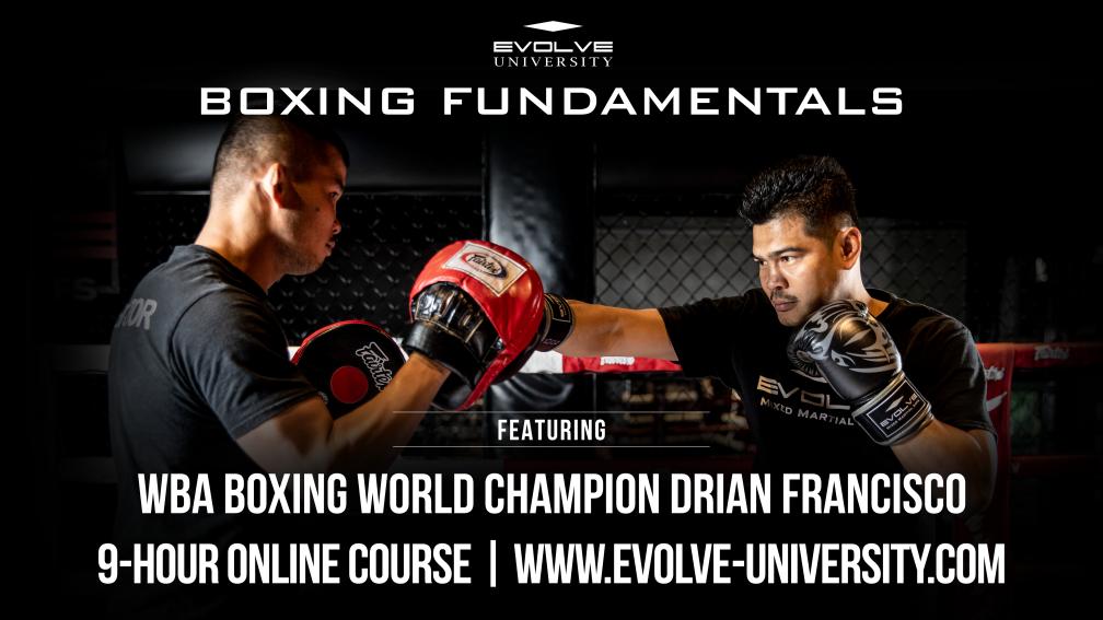 Boxing fundamentals landscape cover