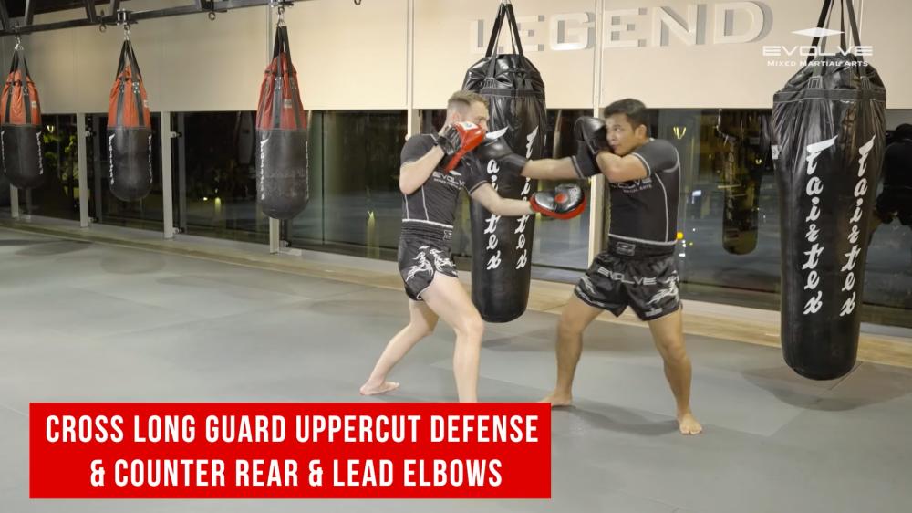 Cross long guard uppercut defense & counter rear & lead elbows