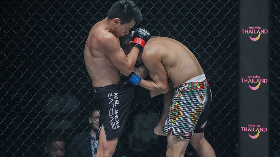 An Introduction To Clinching In MMA