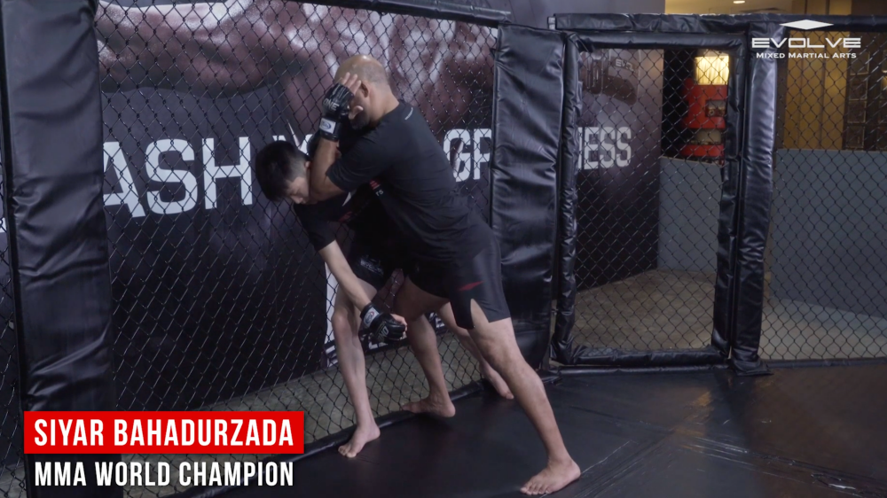 elbow strike mma cage