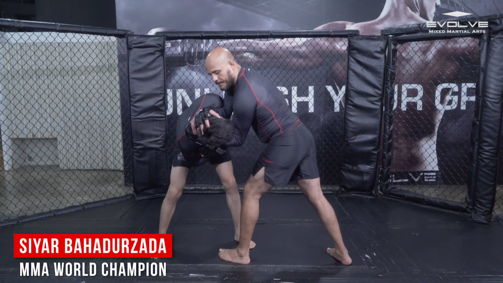 use muay thai whip in mma clinch