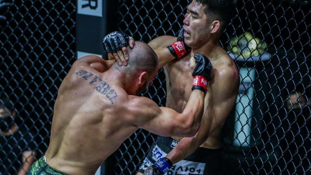 Striking Against The Cage In MMA