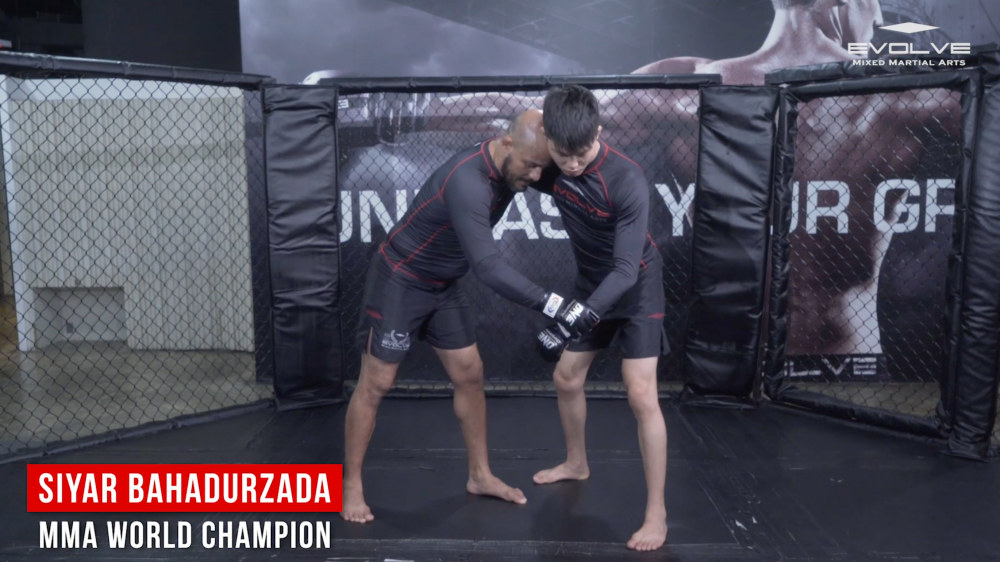 transitioning in mma clinch